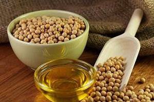 Египет закупува 30 кмт соево масло