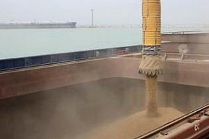 Украйна ще продава на Саудитска Арабия ечемик за 1,5 млрд. долара