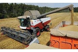 Йордания с втори опит за закупуване на 100 кмт пшеница