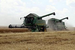 България, Гърция и Румъния сред износителите на пшеница за Франция