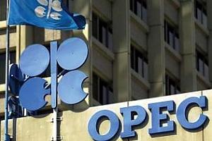 OPEC взе решение за ограничаване добива на петрол