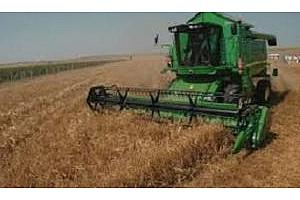 Алжир е договорил покупката на 490 кмт хлебна пшеница