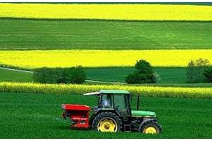 Франция: през 2012 г. производството на зимен ечемик и рапица ще бъде намалено с почти 10%