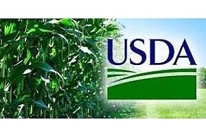 Пшеница и соя подкрепени от доклада на USDA
