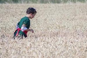 Твърдо евро и рекордно предлагане потискат пшеницата на Матиф