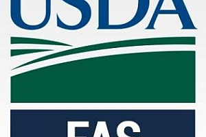 USDA очаква рекордни реколти от пшеница и слънчоглед в България