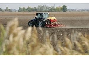 Обемът на търговете с фючерси за украинска пшеница в Чикаго не превиши 300 хил. тона