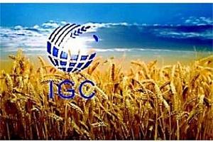 IGC повишават производството на пшеница и царевица