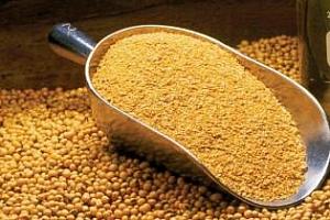 Филипините ще купуват фуражна пшеница и соев шрот