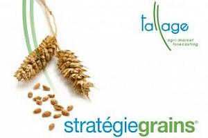 Strategie Grains понижават експорта на пшеница от ЕС с 0.9Ммт
