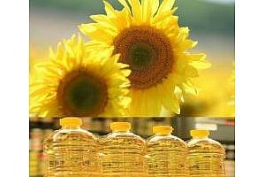 Суровото слънчогледовото олио за Египет поевтинява