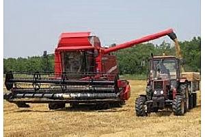 Германските кооперативи очакват най-слабата зърнена реколта от 1994г