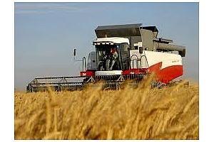 Conab повиши прогнозата за производство на царевица в Бразилия през сезона 2011/12