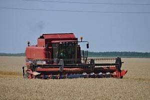 Марат Ахметов съветва да не се радваме на цените на зърното