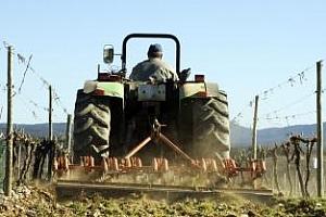 Нови по-кратки срокове за одобряване на проекти и заявки за плащане по ПРСР