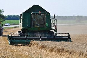 Ново понижение за реколтата от пшеница в Русия