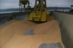 Повишен износ на зърно от пристанище Бургас