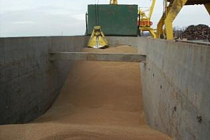 13 млн. лева укрит и невнесен ДДС от производители и търговци на зърно