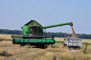 Strategie Grains прогнозира по-висок добив от пшеница в ЕС за 2012/13