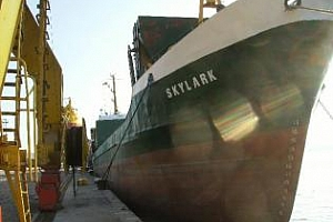 Регистриран е изключително голям износ на пшеница от България