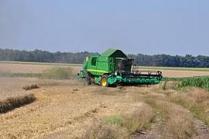 Франция прибра добра зърнена реколта
