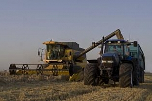 Strategie Grains: Понижена е прогнозата за зърнената реколта в ЕС