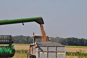 MARS: Средният добив от зърнените култури в ЕС се понижи с 6%