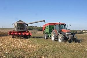IGC: Напрегнат световен баланс за царевицата през сезон 2012/2013
