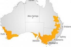 Световният баланс на пшеницата ще се наруши заради Австралия