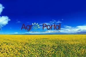 За нас - или Какво да очаквате от Агропортал