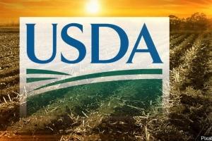 USDA очакват рекордни добиви от царевица и соя в САЩ