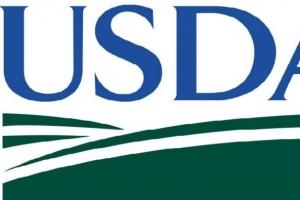USDA виждат рекордни добиви от царевица в Черноморския регион