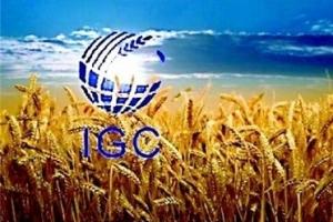 МСЗ понижават новата реколта от пшеница и царевица в Света