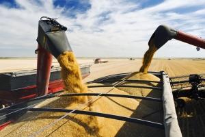 Алжир договаря внос на 570кмт хлебна пшеница