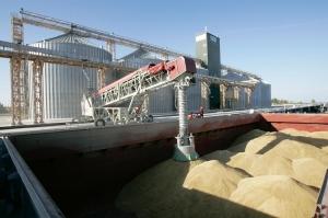 Египет отново ще внася хлебна пшеница
