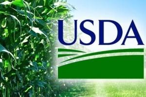 USDA посича надеждите за поскъпване на зърнените пазари