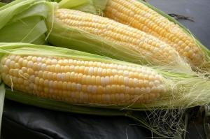 Вносителите на царевица се активизират след срива в Чикаго