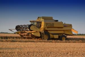 Русия и Украйна спечелиха египетския търг за пшеница