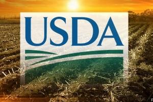 USDA понижава реколтата, но повишава запасите от пшеница в Света