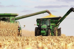 Сухо лято понижава зърнената реколта в Черноморския регион