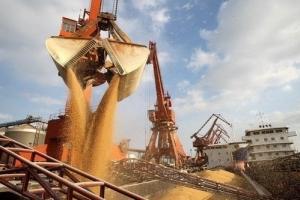 Зърненият експорт на Украйна нараства с 52% за сезона