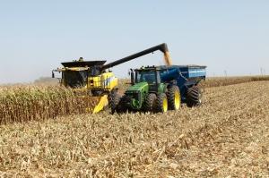 Зърнените пазари продължават с негативна корекция