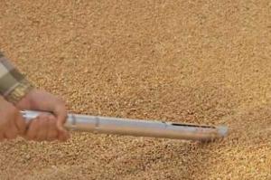 Coceral повишават зърнената реколта в България с над 1Ммт