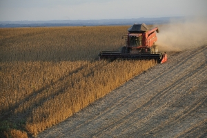 Фондовете покриват къси на царевица, соя и пшеница