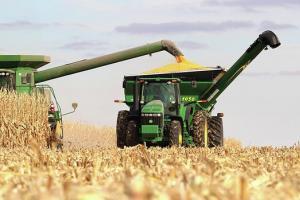 Силна пшеница обръща спада на царевицата в Чикаго