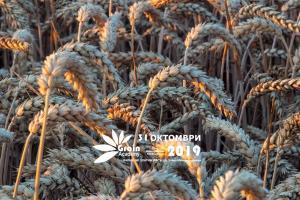 Кой продава най-скъпо зърното си в Черноморския басейн?