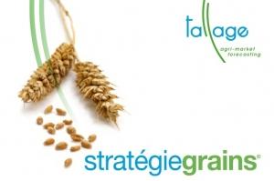 Спрямо юли Strategie Grains повишават експорта на пшеница от ЕС с 5Ммт
