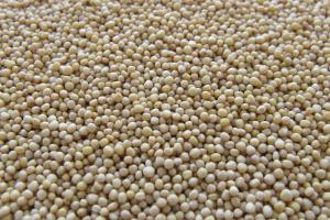 Вносът на аграрни продукти в Китай нараства