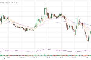 Седмично поевтиняване за цените на пшеница и царевица