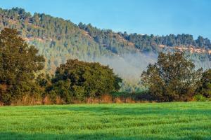 Българските фермери наваксват с есенната сеитба